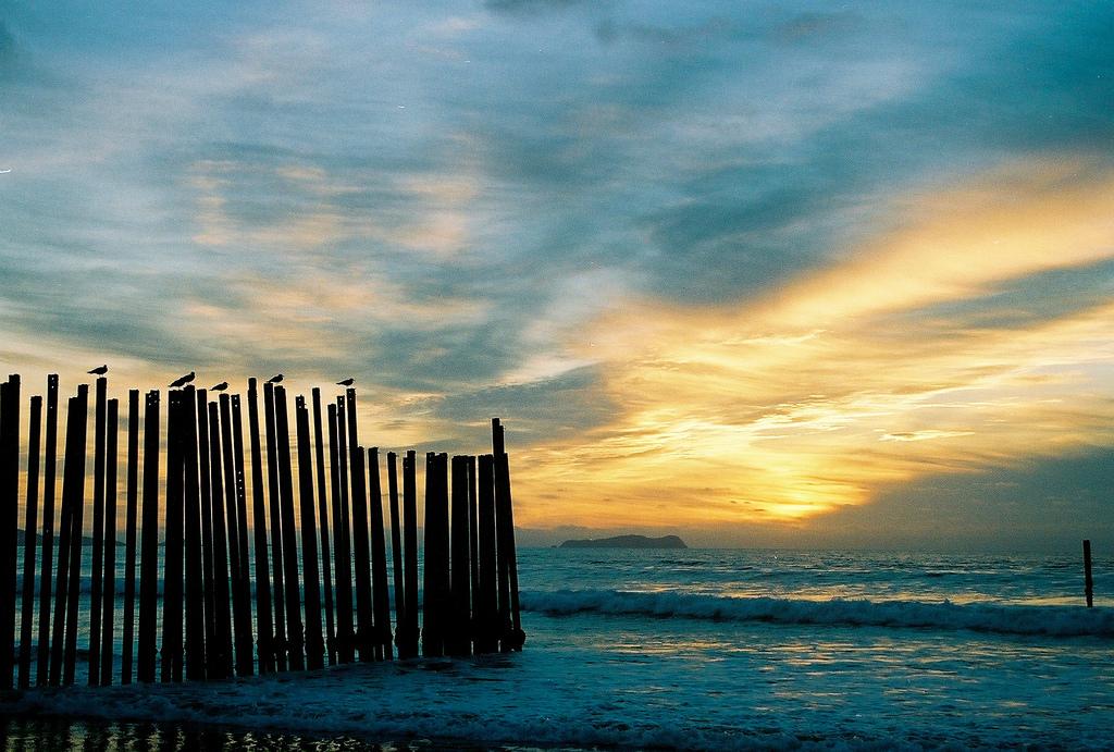 Ein künstlich angelegter Zaun an einem Strand im Licht eines Sonnenuntergangs